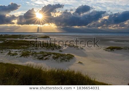 karanlık · fırtınalı · bulutlar · güneş · doğa · iklim · değişikliği - stok fotoğraf © stevanovicigor