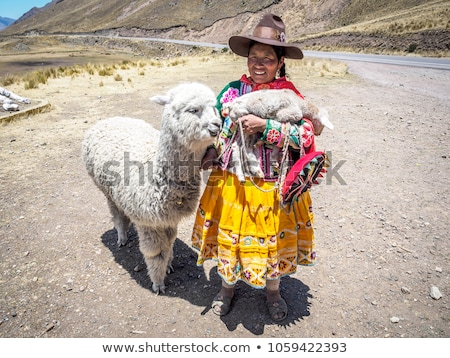 Peruvian girl with alpaca Stock photo © adrenalina