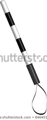 Police baton icon Stock photo © angelp