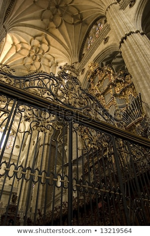 central nave of cathedral salamanca spain stock photo © photooiasson