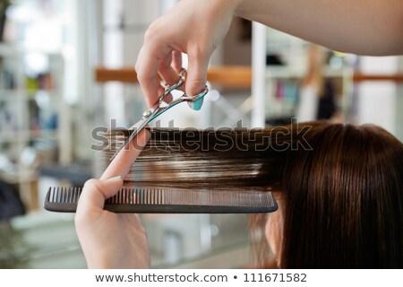 Kép profi stylist vág haj ügyfél Stock fotó © deandrobot