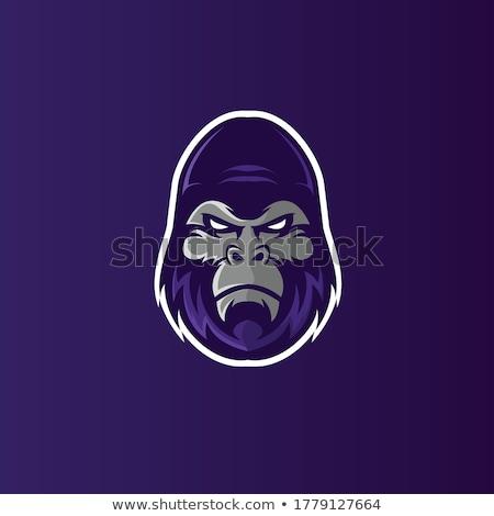 горилла голову дизайн логотипа силуэта обезьяны шаблон Сток-фото © Andrei_