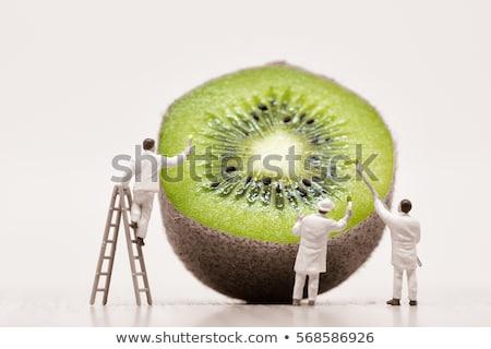 painters coloring kiwi macro photo stock photo © kirill_m