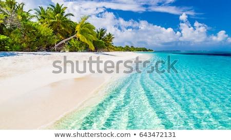 Filipiny plaży piękna niebo rybaka łodzi Zdjęcia stock © joyr