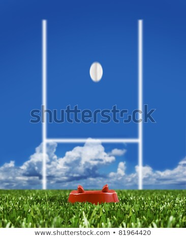 Rugby Ball Ready To Be Kicked Over The Goal Posts Stok fotoğraf © Tish1