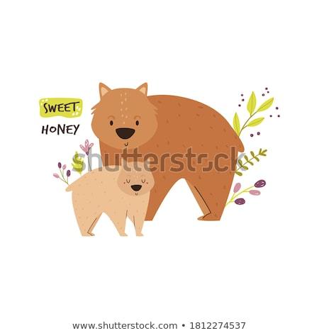 Cute wombat blij gezicht illustratie glimlach gelukkig Stockfoto © bluering
