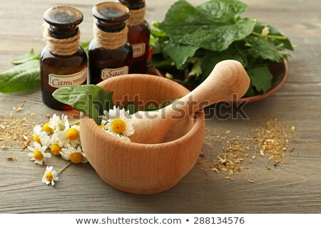 dried and fresh chamomile flowers and leaves on wooden rustic background alternative medicine stock photo © yelenayemchuk