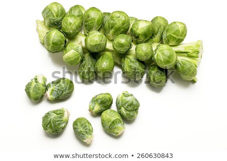 Fresh Sprouts On Stalk Stock photo © monkey_business