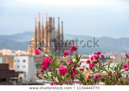 Befejezetlen gótikus katedrális família Barcelona Spanyolország Stock fotó © joannawnuk