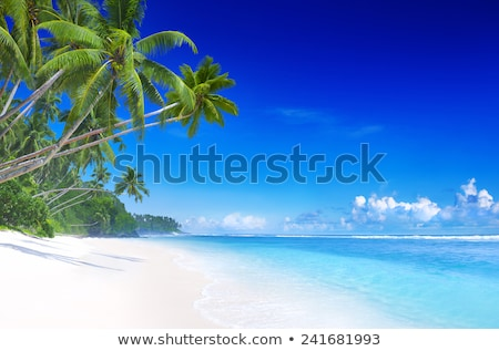 Arena blanca cielo azul fondo belleza verano océano Foto stock © Suriyaphoto