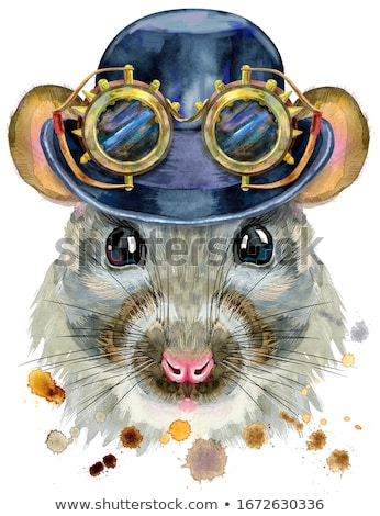 Watercolor portrait of rat with hat bowler and steampunk glasses. Stock photo © Natalia_1947