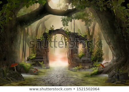 Ancient Woods Stock photo © THP