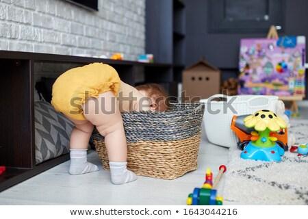 toddler in wickerbasket Stock photo © gewoldi