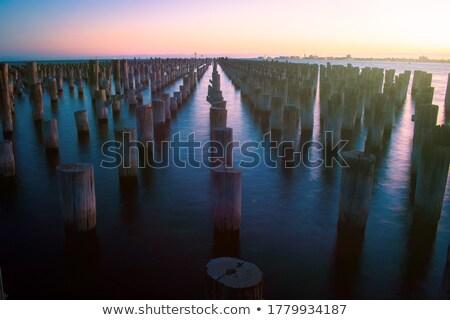 мнение · Ванкувер · воды · панорамный · город · парка - Сток-фото © searagen