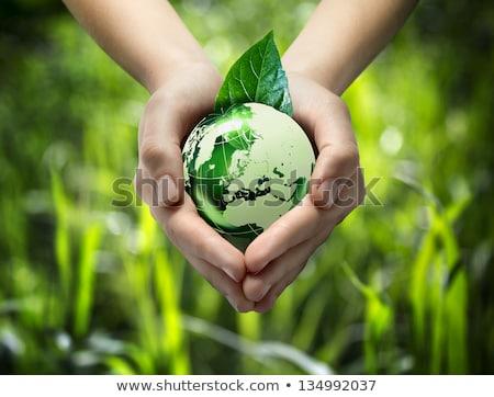 groene · energie · laptop · hemel · internet · natuur · web - stockfoto © fenton