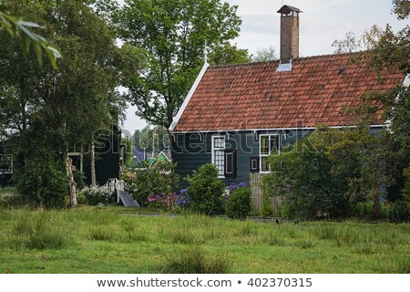 small windows in a house with a reed roof stock photo © samsem