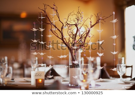 Stock photo: Wedding dinner detail in white and brown