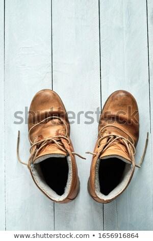 kahverengi · zarif · ayakkabı · beyaz · yalıtılmış · dizayn - stok fotoğraf © ruzanna