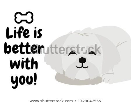 puppy nursery decor photo Stock photo © marimorena