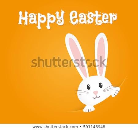 Coniglio pasquale disegno arte cute cartoon Foto d'archivio © indiwarm