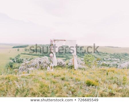 horizontal view Bowtie Arch Stock photo © vwalakte