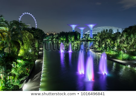 Singapore illuminated Stock photo © joyr