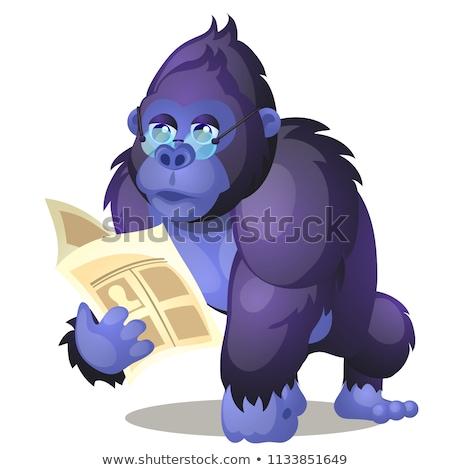 Inteligente mono Cartoon ilustración vector Foto stock © derocz