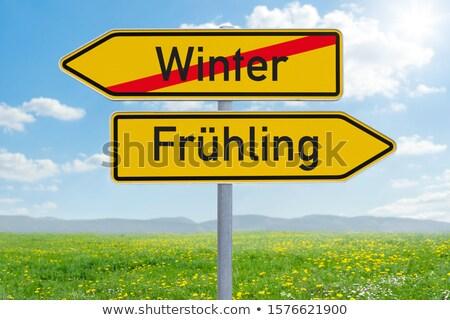 Zimą wiosną naprzeciwko znaki dwa Błękitne niebo Zdjęcia stock © stevanovicigor