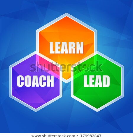 learn, coach, lead in hexagons, flat design Stock photo © marinini