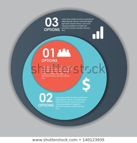 Metallic infographics pie graph  Stock photo © Yuriy