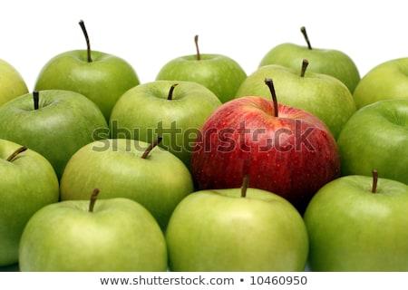 különböző · fogalmak · alma · zöld · absztrakt · siker - stock fotó © mikko