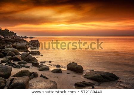 hajóroncs · part · naplemente · tenger · nap · mögött - stock fotó © kayco