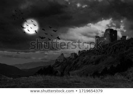 Ruins of a Castle on the Hill Stock photo © Kayco