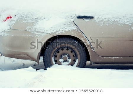 cars covered by snow after winter storm stock photo © pixelsaway