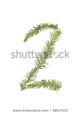 スプルース · 番号 · 孤立した · 白 · ツリー · 冬 - ストックフォト © gemenacom