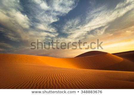 evening desert landscape Stock photo © Mikko