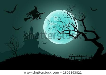 vektor · halloween · keret · hold · valósághű · háttér - stock fotó © saicle