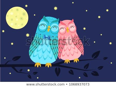 ночь совы пару любви луна птица Сток-фото © Anna_leni