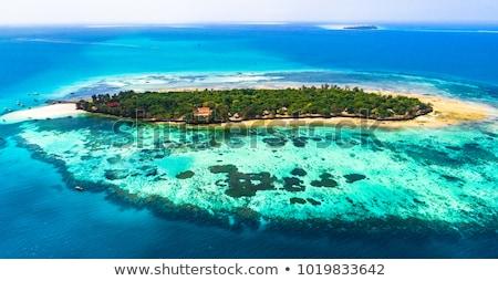 Plaj tekne hapis ada Tanzanya su Stok fotoğraf © lkpro