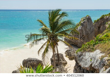 Tulum old town ruins in Mexico. Stock photo © feedough