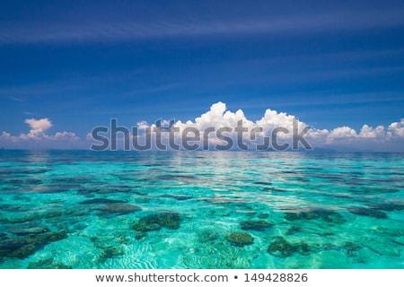 Idyllic beach with clear water Stock photo © epstock