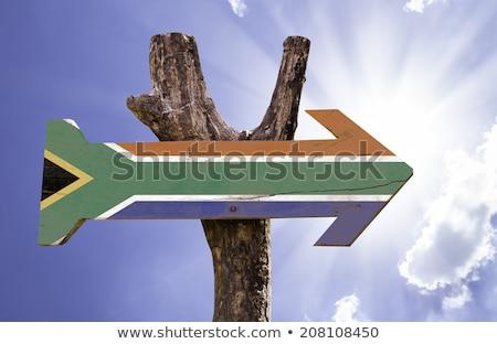Legno bandiera Sudafrica grunge segno blu Foto d'archivio © olgaaltunina