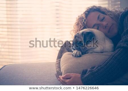 Szczęśliwy szczeniak sofa domu Zdjęcia stock © wavebreak_media