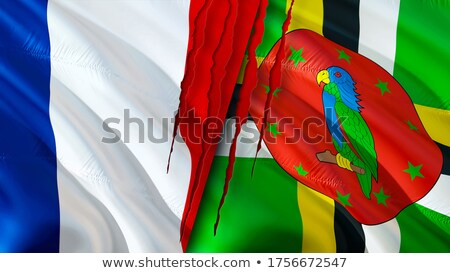 France and Dominica Flags Stock photo © Istanbul2009
