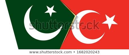 Turkije Pakistan vlaggen puzzel geïsoleerd witte Stockfoto © Istanbul2009