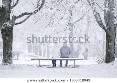 Affectionate young couple enjoying the fresh snow Stock photo © dash