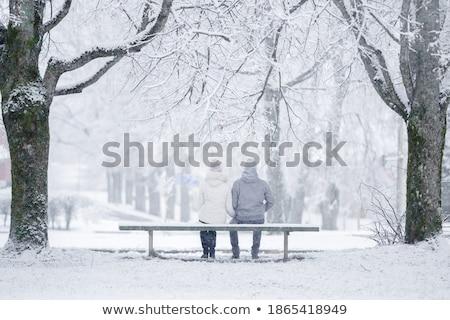привязчивый свежие снега зима Сток-фото © dash