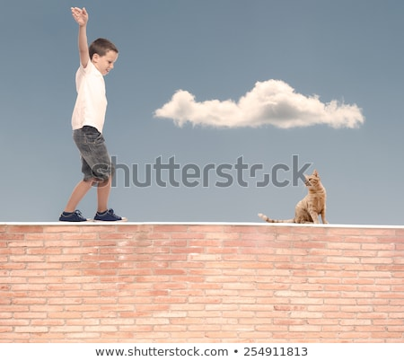 Kid - balance walking on wall Stock photo © zurijeta