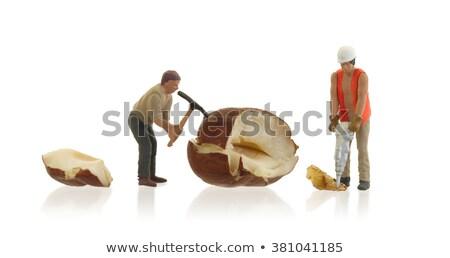 миниатюрный · работник · рабочих · продовольствие · здоровья - Сток-фото © michaklootwijk