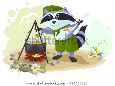 Scout raccoon cooking soup over campfire. Summer holidays camping Stock photo © orensila